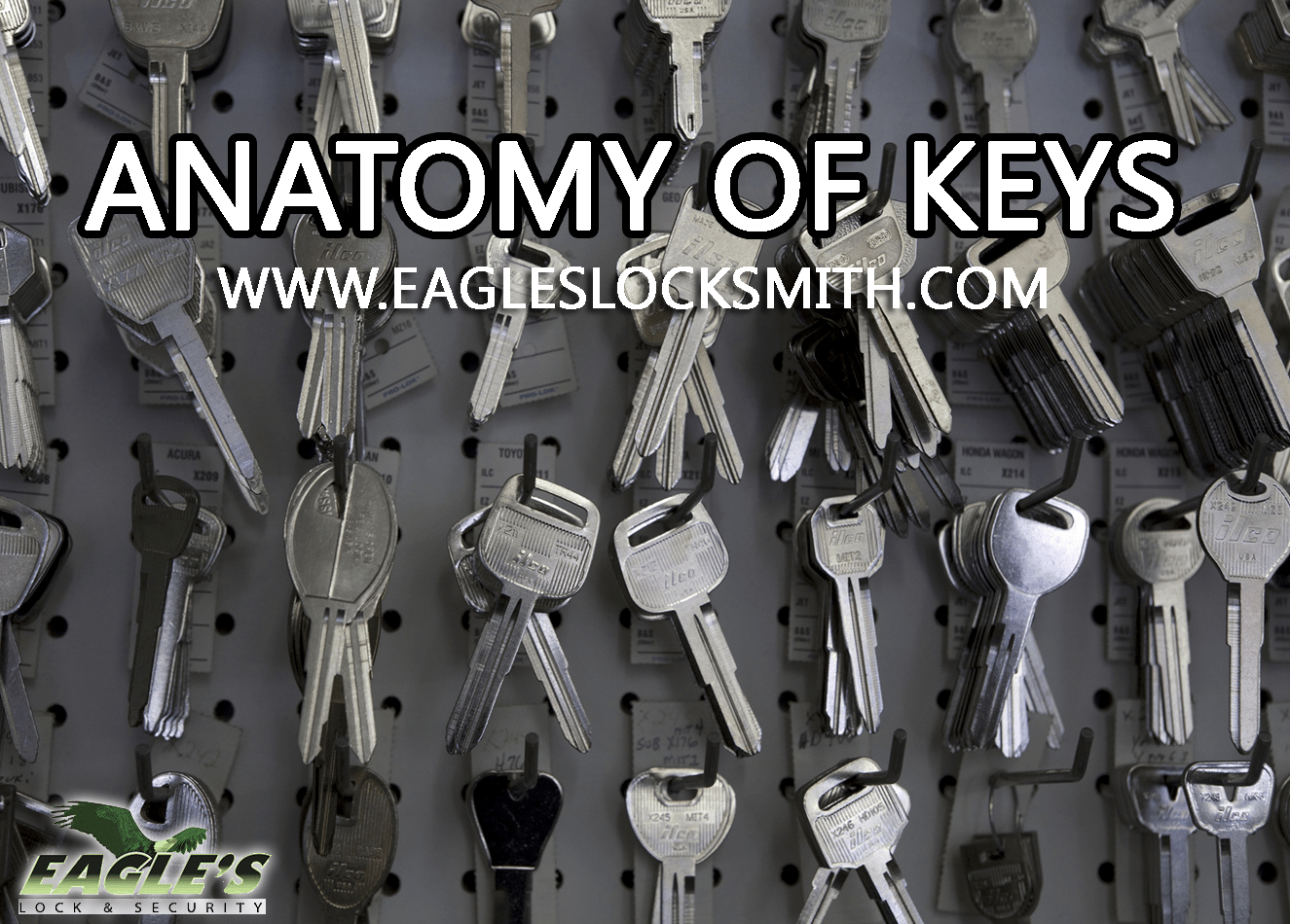 anatomy keys